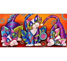 Party Animals Kitty Style Photographic Print