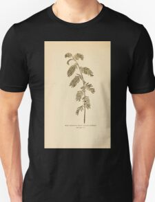 Harper's Guide to Wild Flowers 1912 Creevey, Caroline and Stickney, Alathea 056 Wild Sensitive Plant Unisex T-Shirt