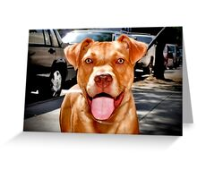 This Is Diesel. Do You Like Him? Greeting Card