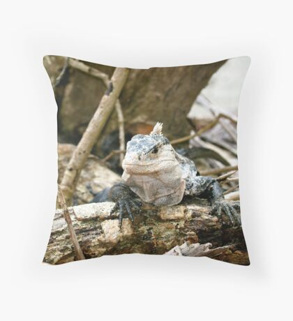 Manuel Antonio Iguana Throw Pillow