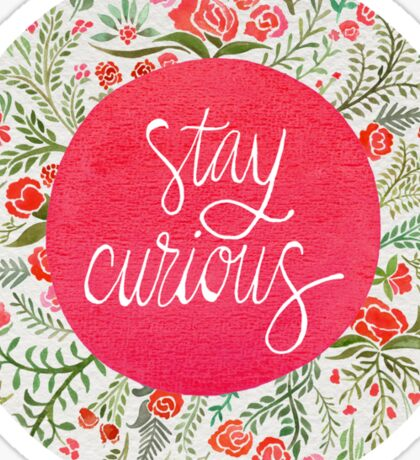 Stay Curious – Pink & Green Sticker