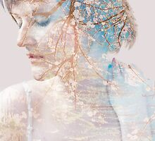 Himalayan Spring by Anna Alferova