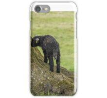Herdwick ewe and curious lamb iPhone Case/Skin