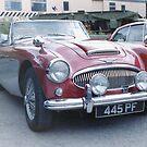 Austin Healey 3000 by Edward Denyer