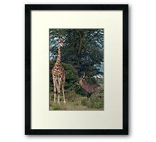 Company Framed Print