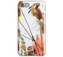 Goldfinches on Teasel iPhone Case/Skin