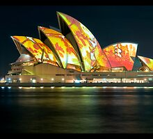 Changing Chameleon - SOH during Vivid - Panorama Series by Jason Ruth