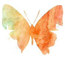 Watercolor Butterflies 4 Photographic Print