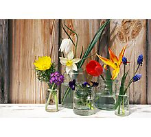 Spring flowers display on a wooden background Photographic Print