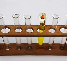 Attention Seeker, Science equipment by Tom Conway