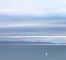 white sail, Abel Tasman National Park , New Zealand  by Christopher Barton