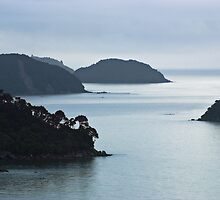 sea stack, Abel Tasman National Park , New Zealand   by Christopher Barton