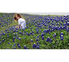 BLUE BONNET Photographic Print