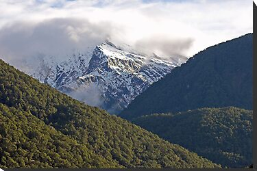Haast Pass , Central Otago , New Zealand by Christopher Barton
