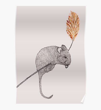 field mouse Poster