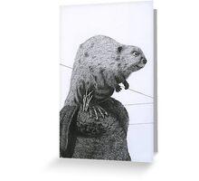Paul Greeting Card