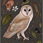 Barn Owl by THEFLORALFOX