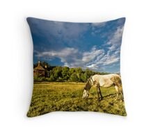 Horse grazing on the meadow Throw Pillow