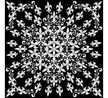 roue de lys (version blanc) Photographic Print