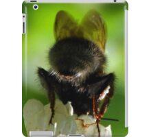 Batty Bee................ iPad Case/Skin