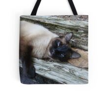 SUSHI IN THE CATS' CRADLE Tote Bag
