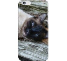 SUSHI IN THE CATS' CRADLE iPhone Case/Skin