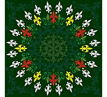 roue de lys (version coleur) Photographic Print