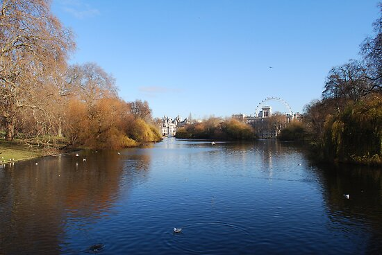 St James's Park by Geraldine Miller