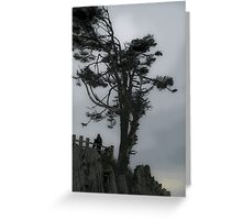 windswept 2 Greeting Card