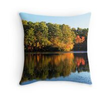 Autumn in Columbia, SC Throw Pillow
