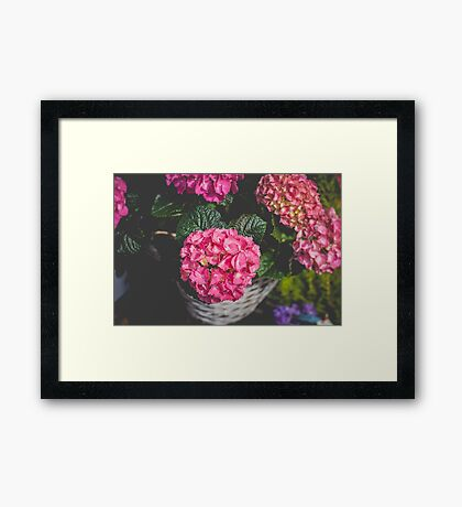 Floral Mood Framed Print