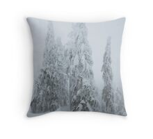 raven, Black Mountain , British Columbia , Canada Throw Pillow