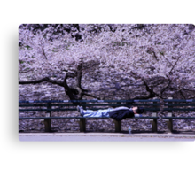 Resting in Central Park. Canvas Print