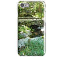 Country Scene - Virginia iPhone Case/Skin