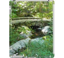 Country Scene - Virginia iPad Case/Skin