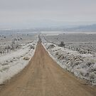 dirt road, Sagebrush Sea , Oregon , United States of America   by Christopher Barton