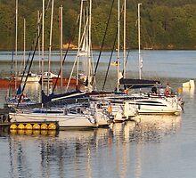 yachts at lake by Artur Mroszczyk