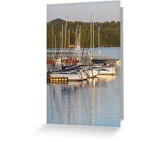 yachts at lake Greeting Card