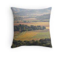 autumn , Napa Valley , California Throw Pillow