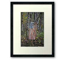 patriotism , Washington State Framed Print