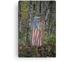 patriotism , Washington State Canvas Print