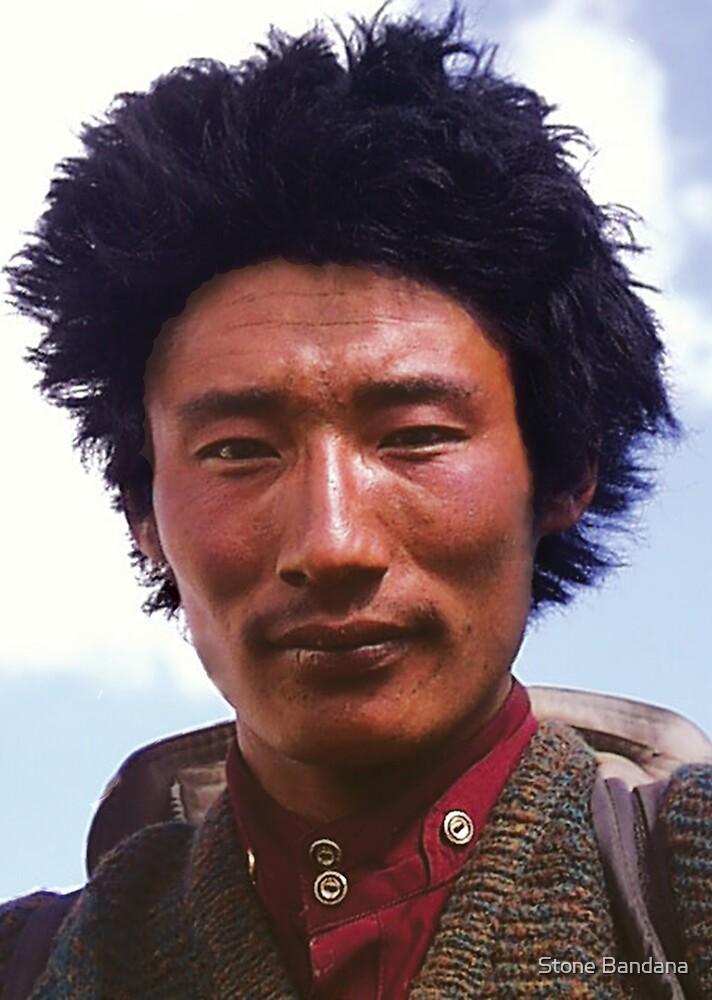 Pilgrim in Tibet by V Stone