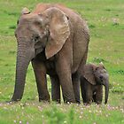 Mother & Son by Macky