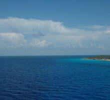 Ocean by nickelb