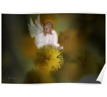 The Wattle Flower Angel Poster