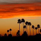 Phoenix Sunset by Paul McKinnon