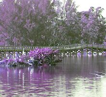Lilac Bridge by Rosalie Scanlon