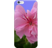 Pink geranium  iPhone Case/Skin