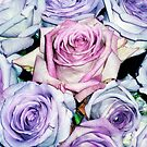Pink and Mauve Roses by Roz McQuillan