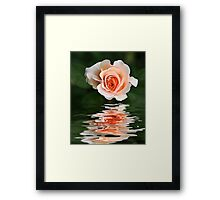 Peach Ripple Framed Print